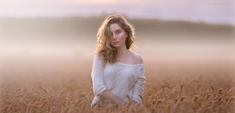 Fields by James Allen Stewart
