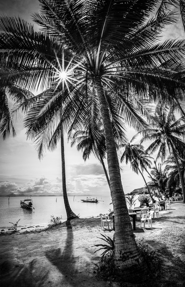 Untitled 4 by Mak Photographi