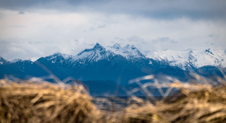 Across The Strait by Bodkin's Best Photography