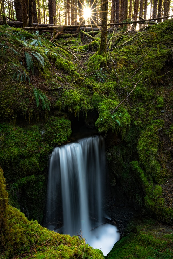 The Fountain by Bodkin's Best Photography