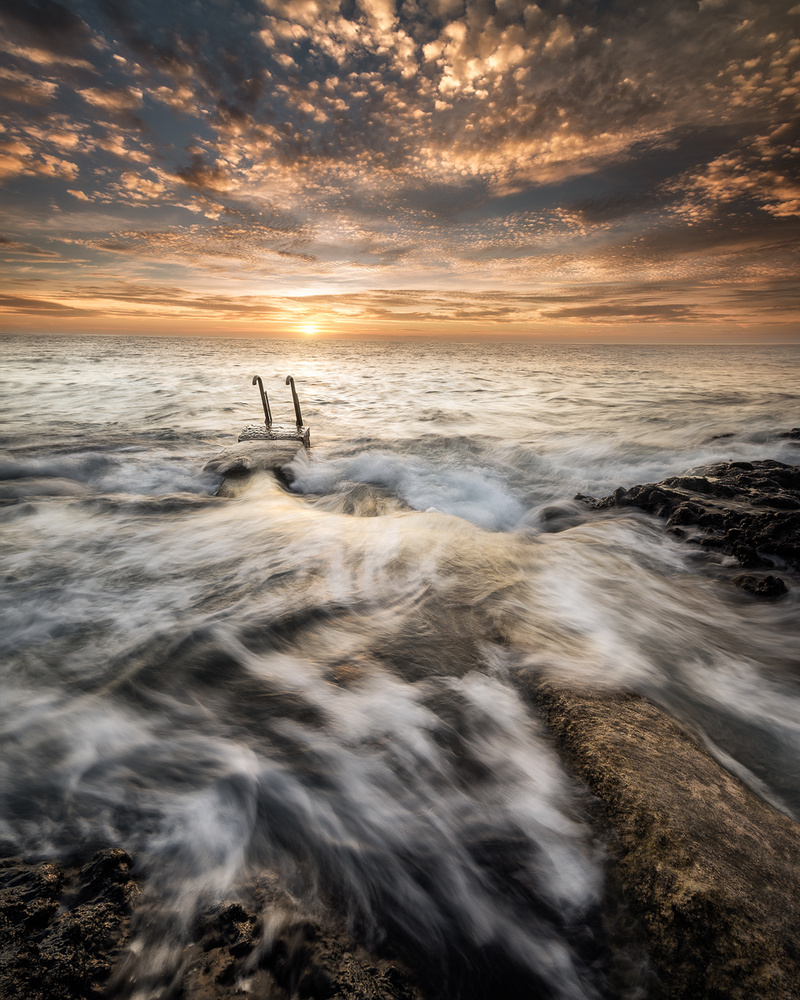 Path to the ocean by Luis Cajete