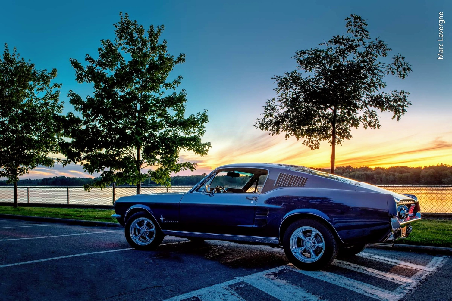 1967 Mustang by Mark Mann