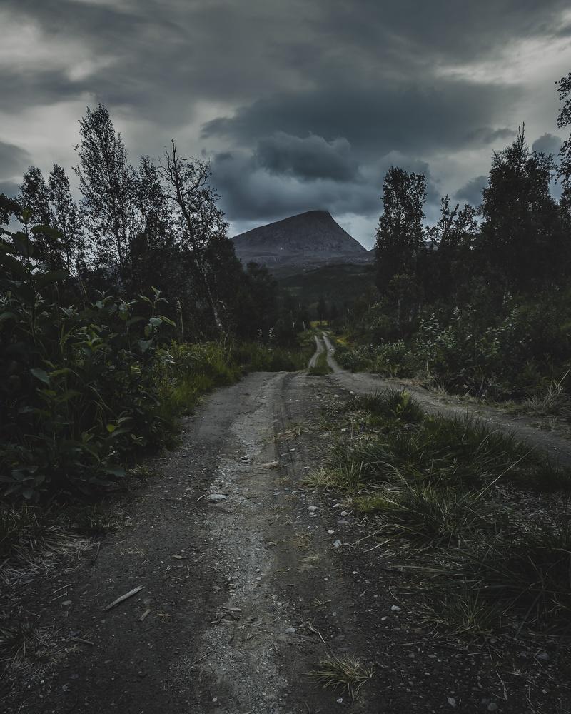 Untitled 9 by Terje Selstad