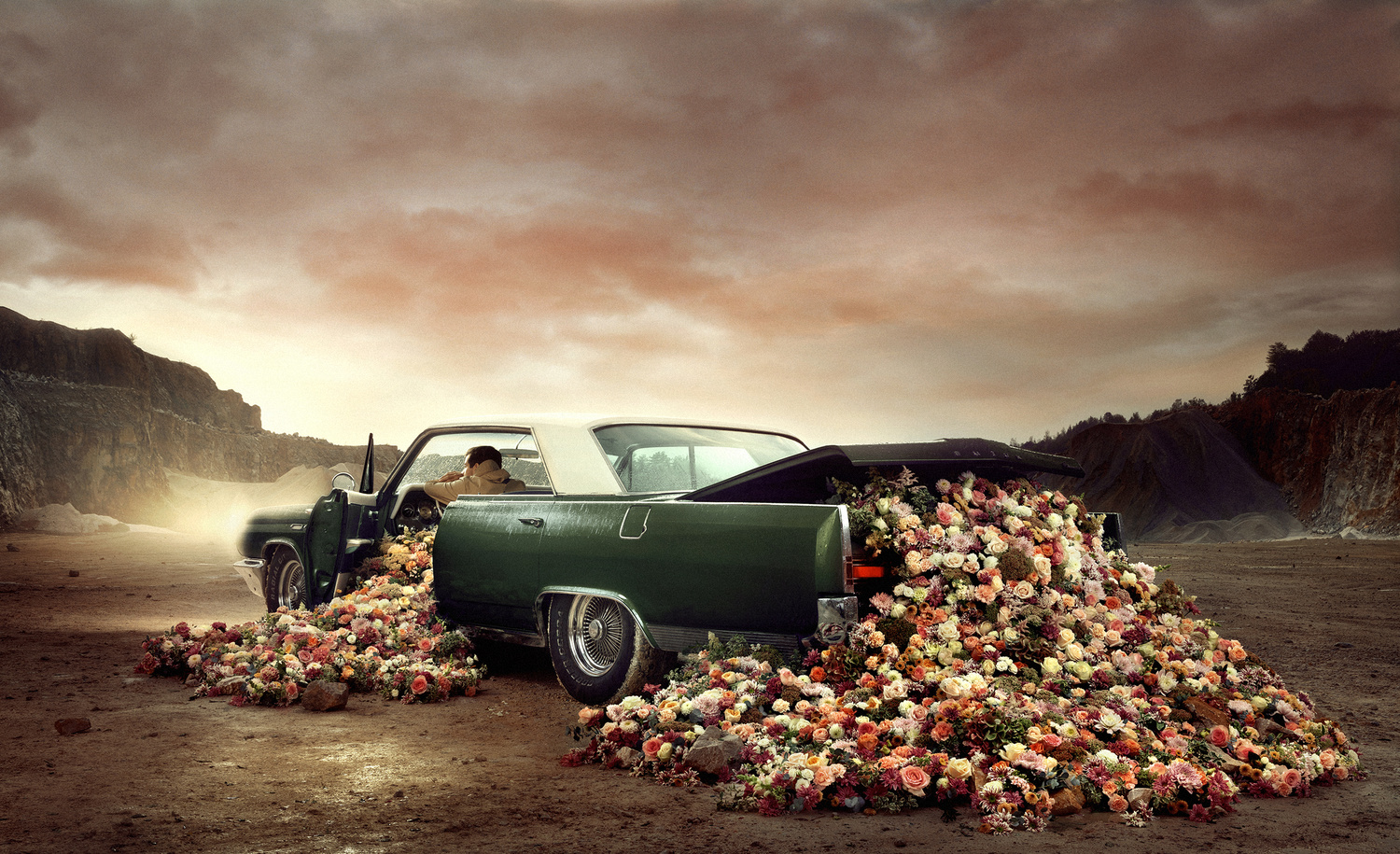 I Bloom For You by Martin Stranka