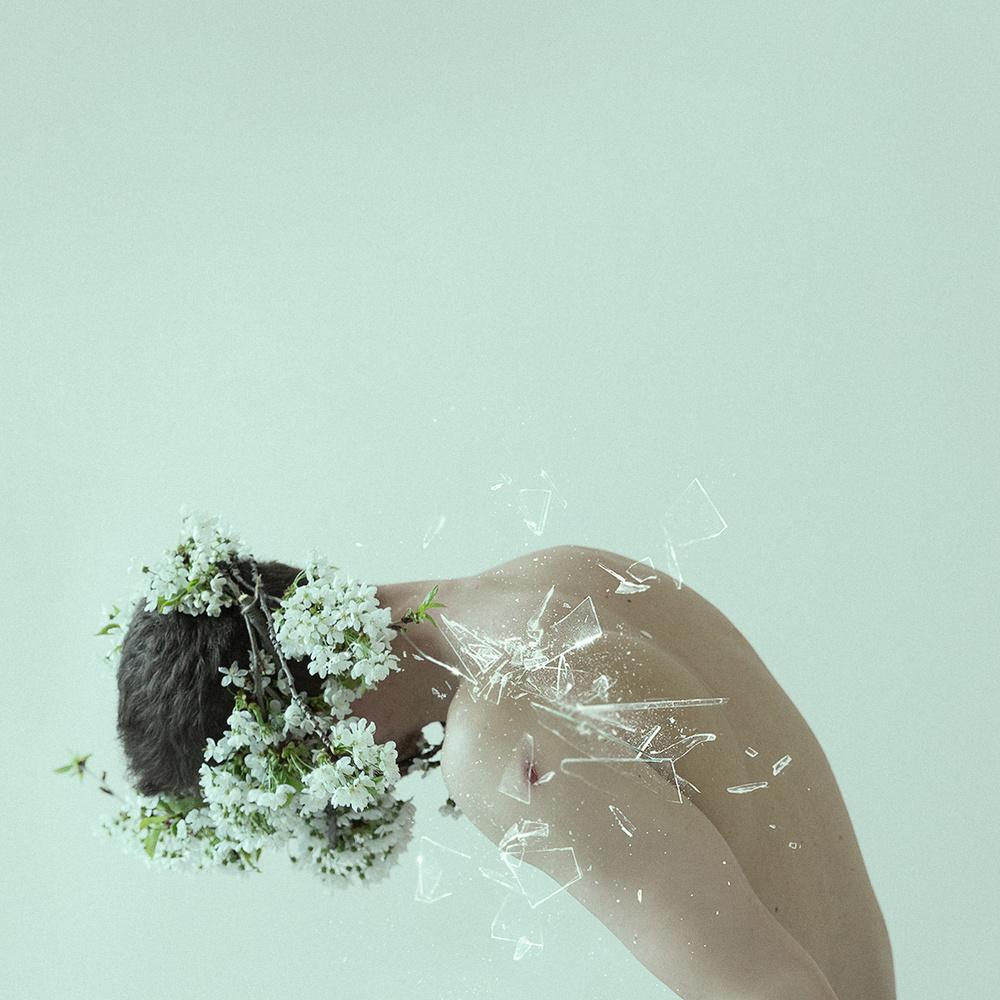 Overgrown by Martin Stranka