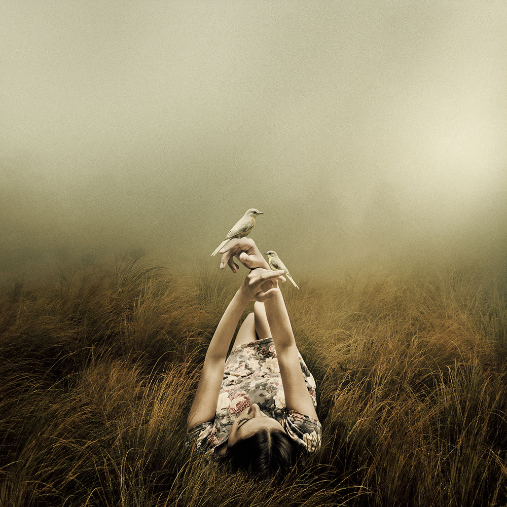 Far From The Rivers by Martin Stranka