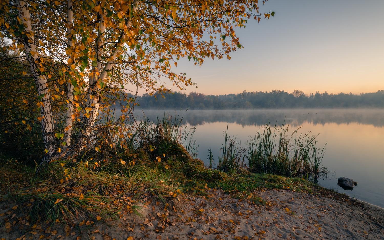 Autumn by Przemysław Telążka