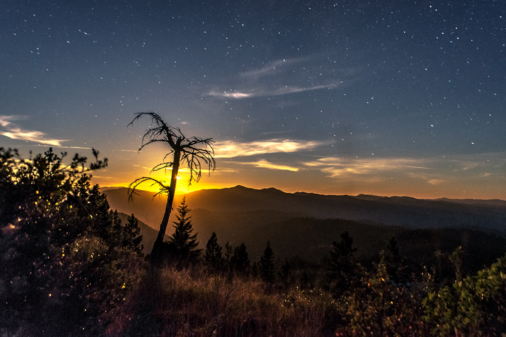 Moonset by Jasman Mander
