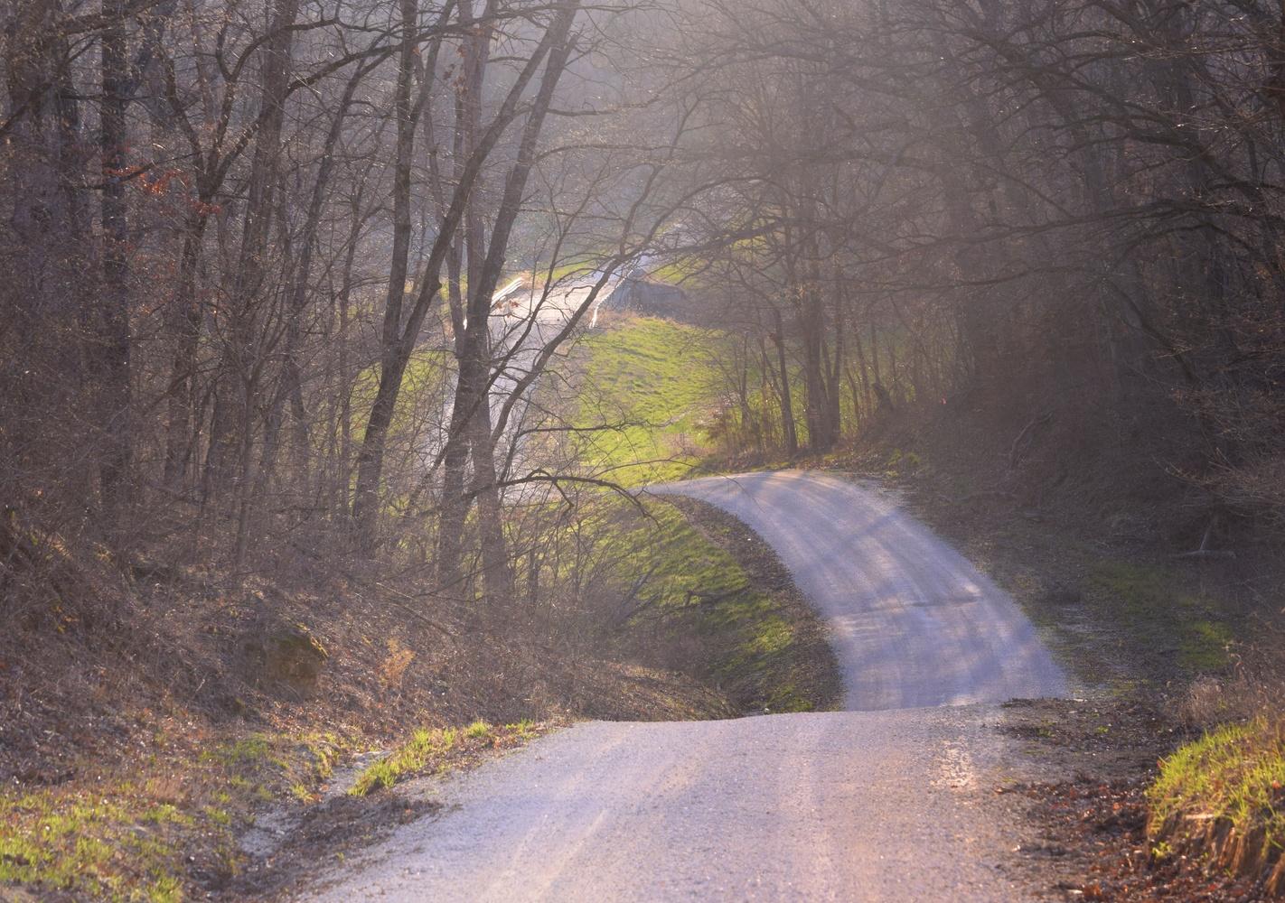 Back Roads by Pam Stewart