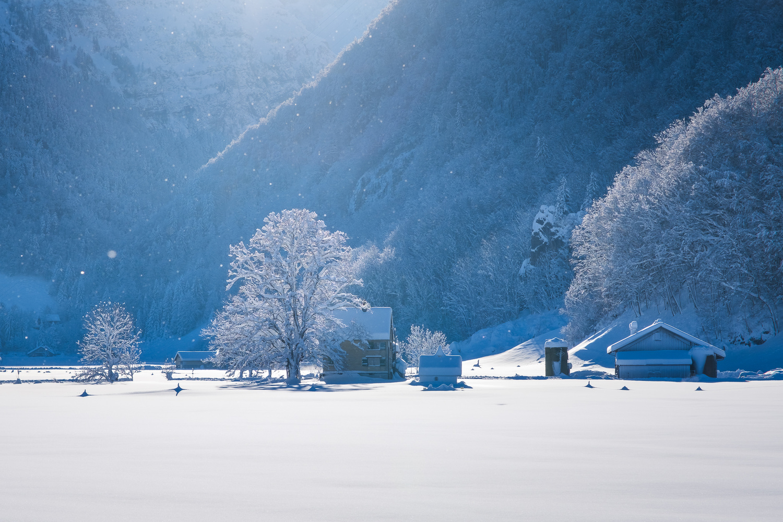 Winter wonderland by Anton Galitch