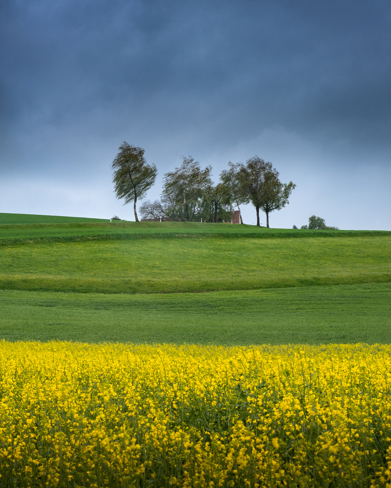 Spring storm by Anton Galitch