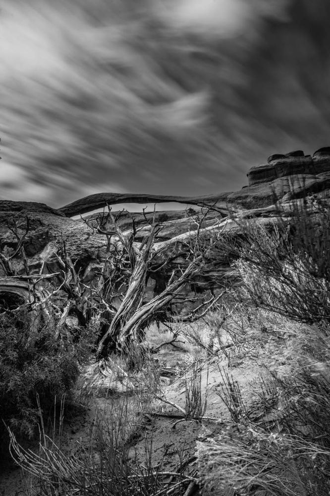 Streaking By by Ian Hayward