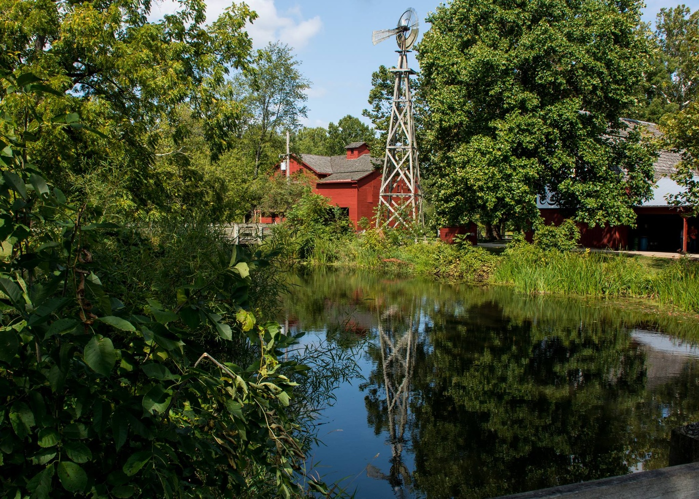 The Mill by Kathleen Horacek