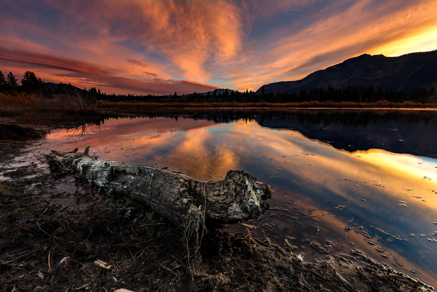 Taylor Creek Sunset by Ross Thayer
