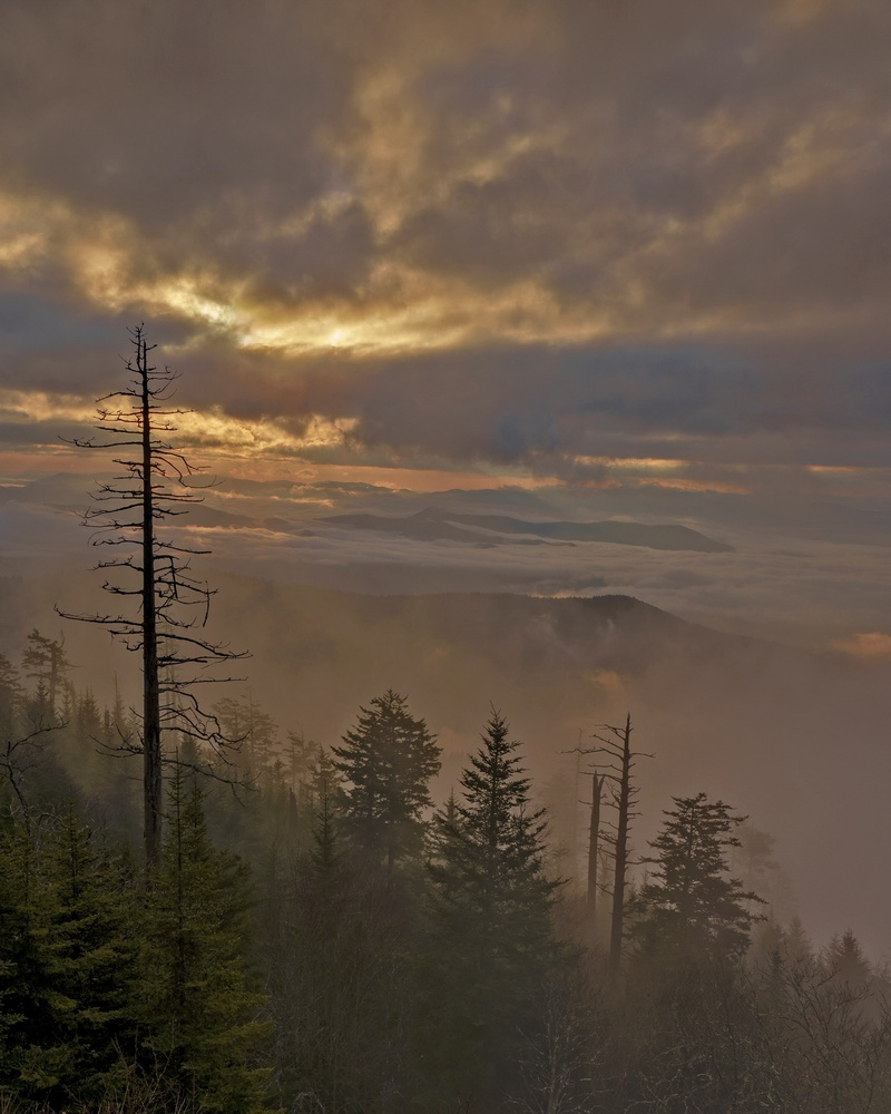 Sunrise from Clingmans Dome by Toney Smith