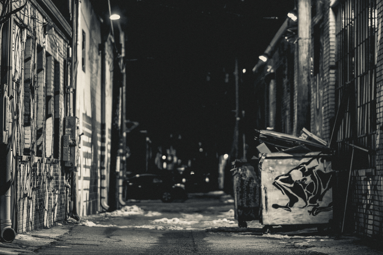 Hidden in the Dark by James Terry