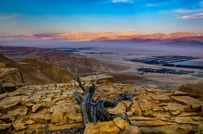 Highest Point by Marcus Sapir