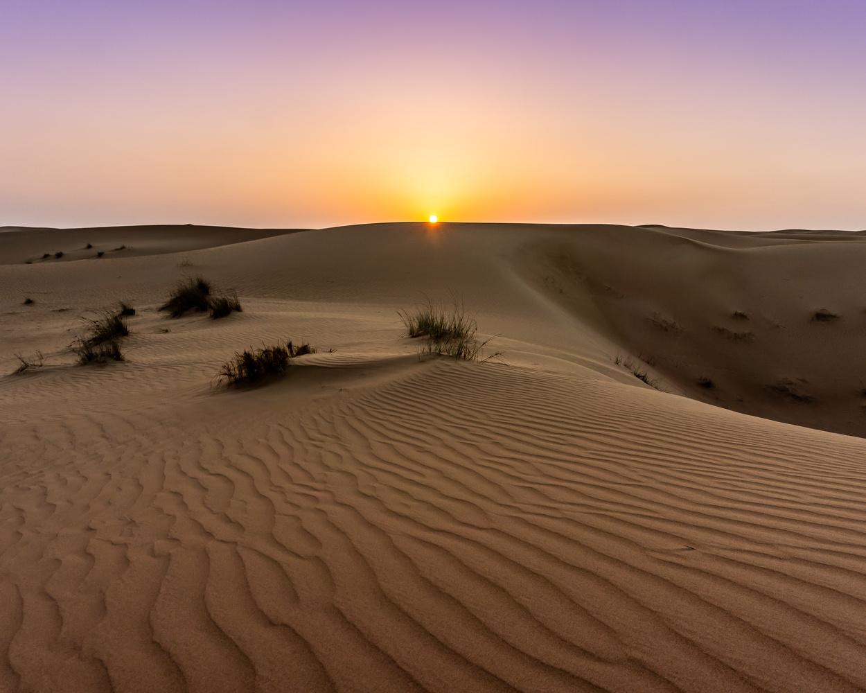 Dunes of Dubai by Dean McGlone