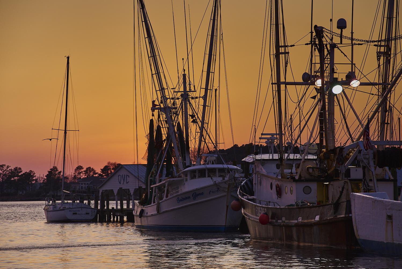 Shrimp Boats by Frank Davis