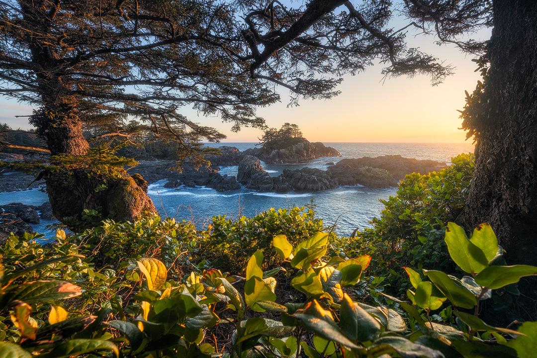 West Coast Frame by Jacob Klassen