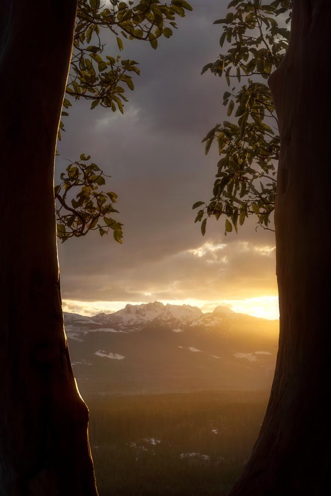 Natural Frame by Jacob Klassen