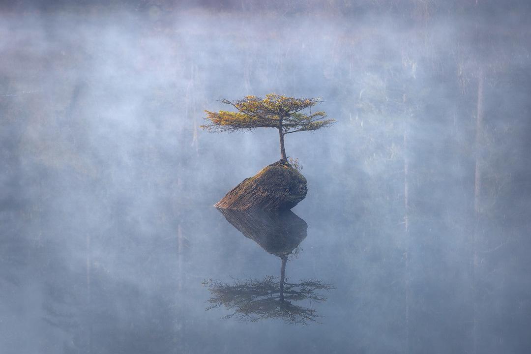 Isolation by Jacob Klassen