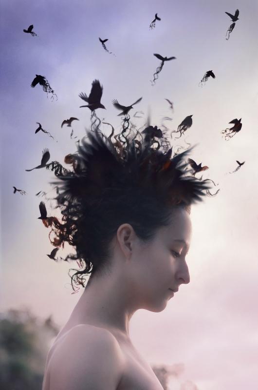 Vanity's Murder by Sarah Allegra