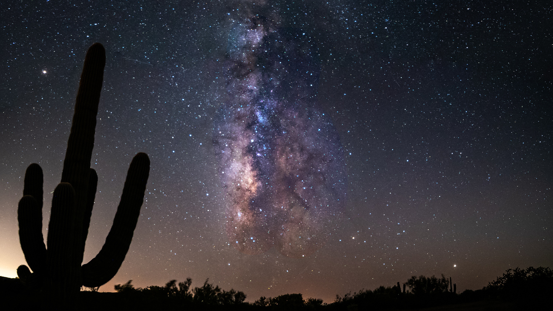Milky Way in the Arizona Desert by Mel Martin