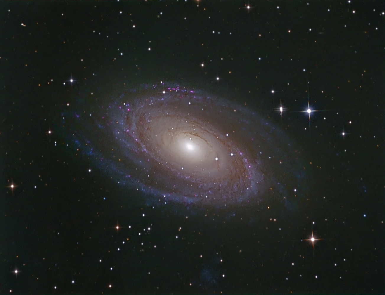 Messier 81 by Mel Martin