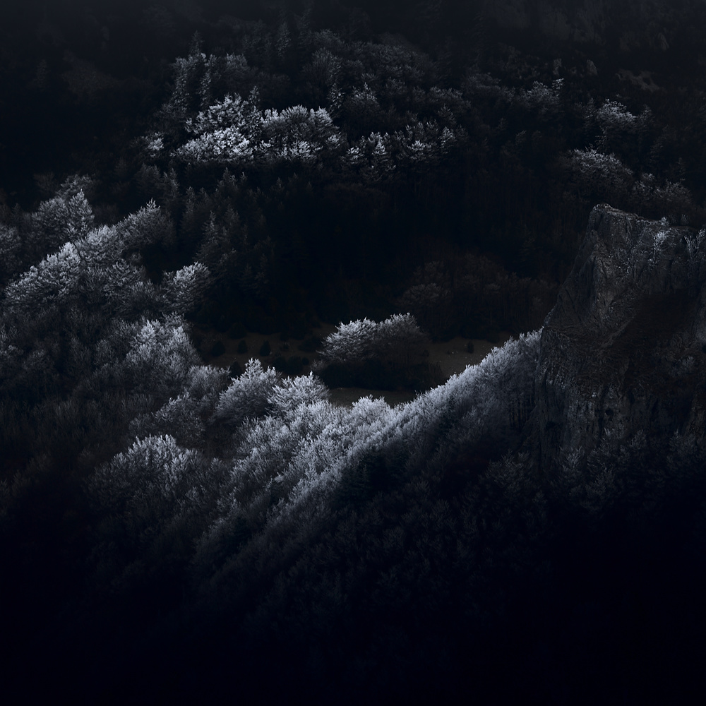 winter marks by david huguet
