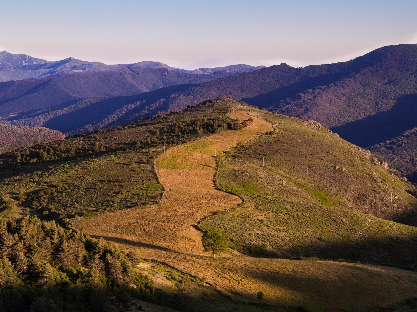 Meadow in landscape by david huguet