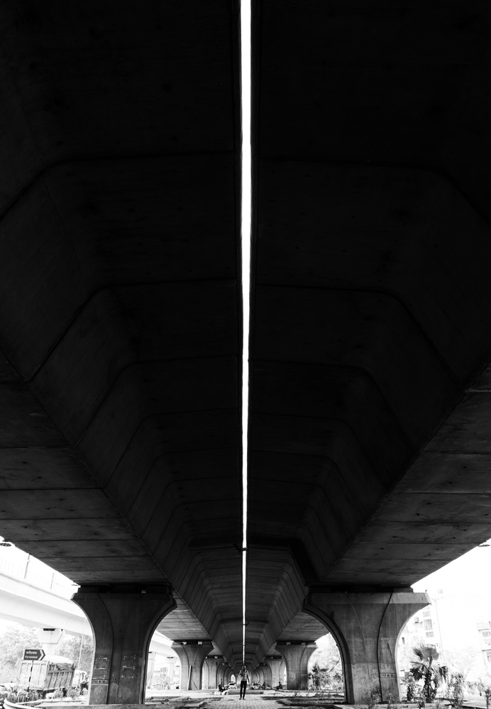 Concrete Jungle by Ashish Shashidharan
