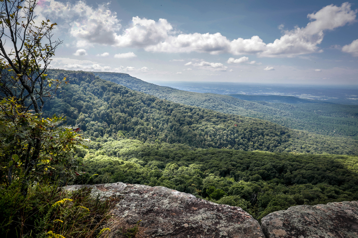 Magazine in the Ozarks by anthony crouch