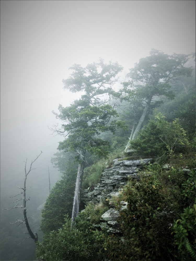 Foggy Mountain by anthony crouch
