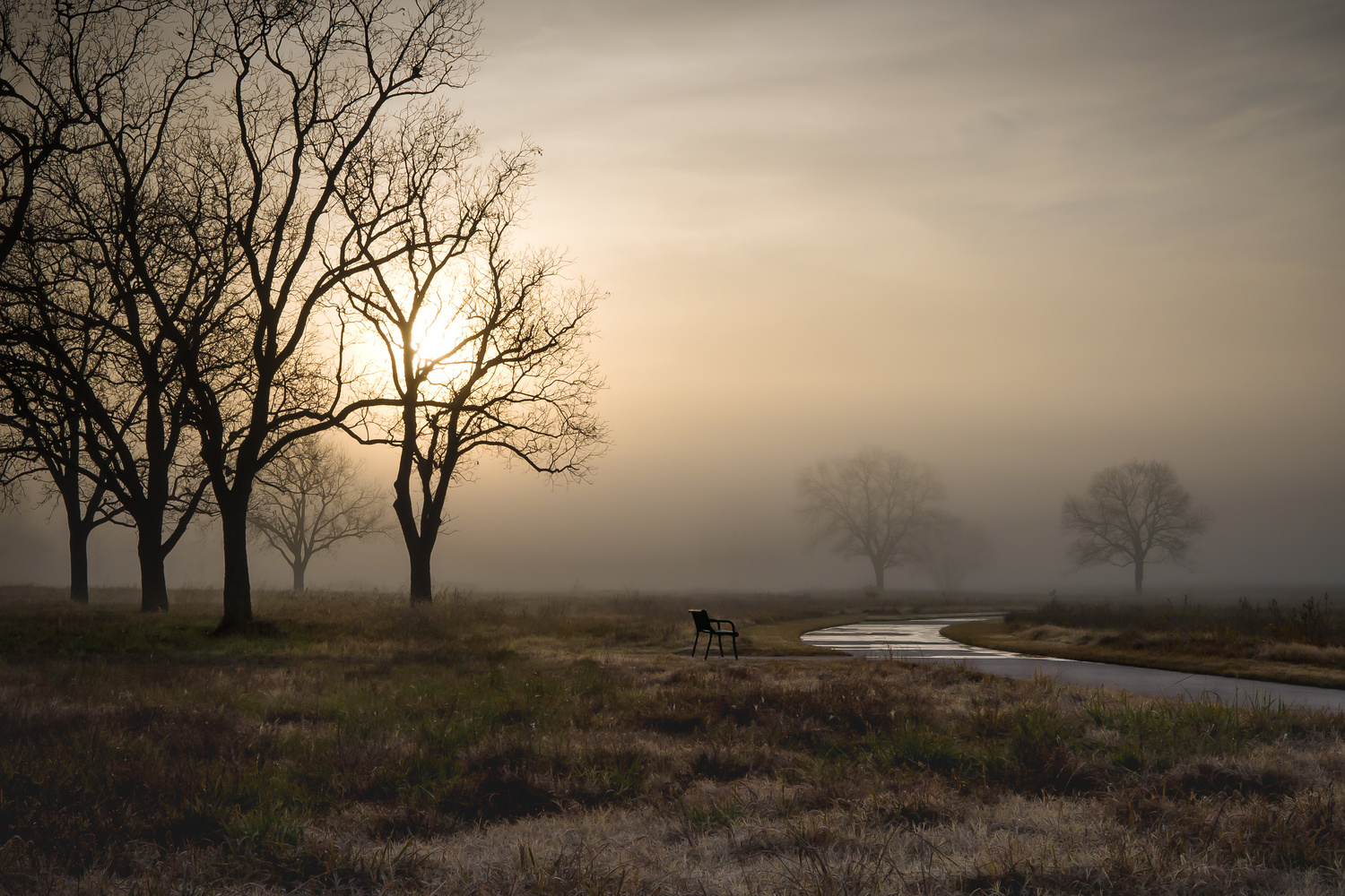 Foggy Sunrise Texas by anthony crouch