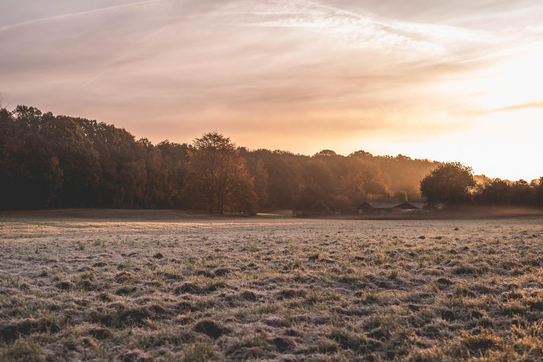 Fogging Morning in Denmark by Hjalte Gregersen