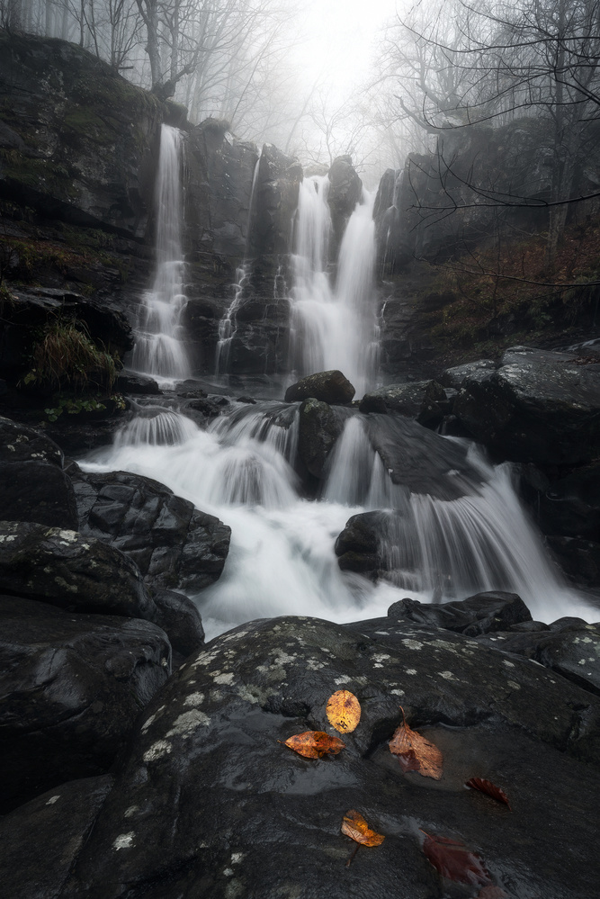 Fall Falls by Davide Donati