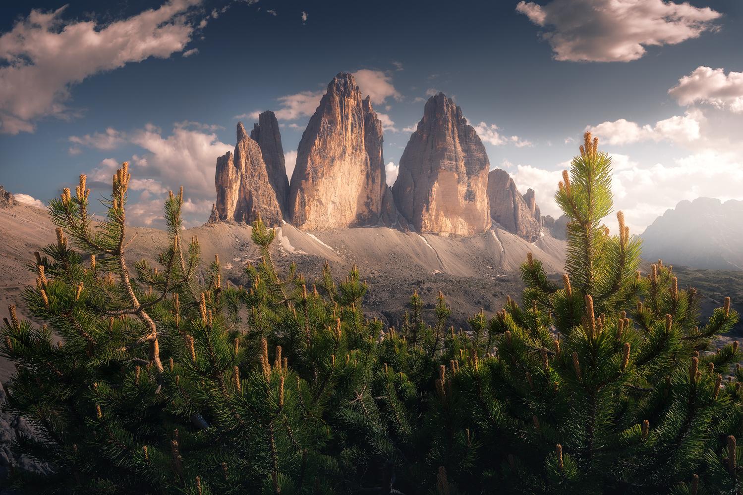 Rural by Alessandro Cerro