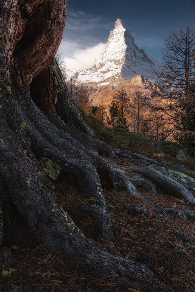 4.478 by Alessandro Cerro