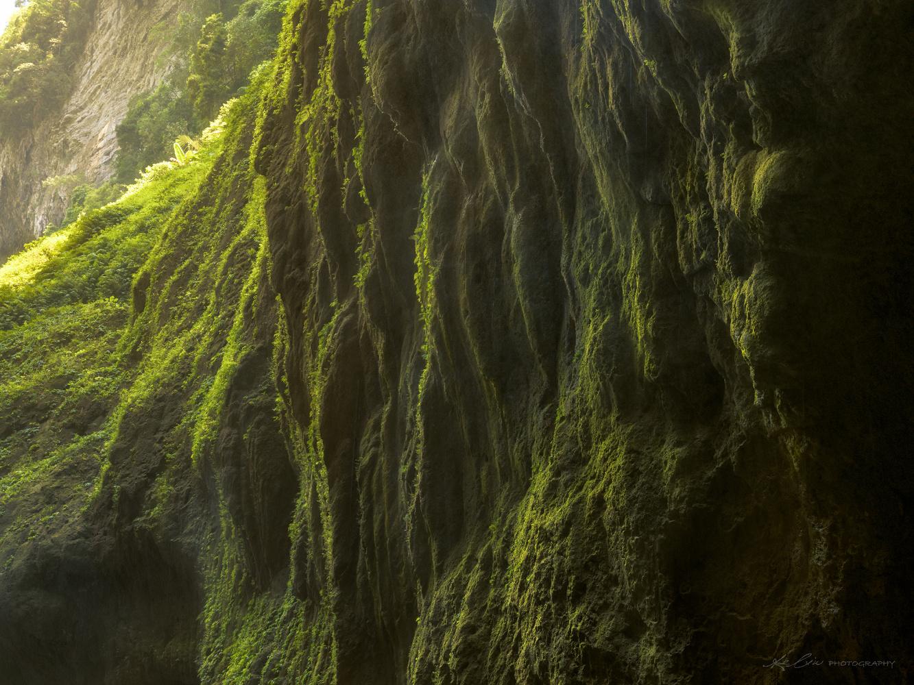 Edge of Green by Ke Liu