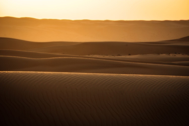 Golden desert by Nejc Trpin