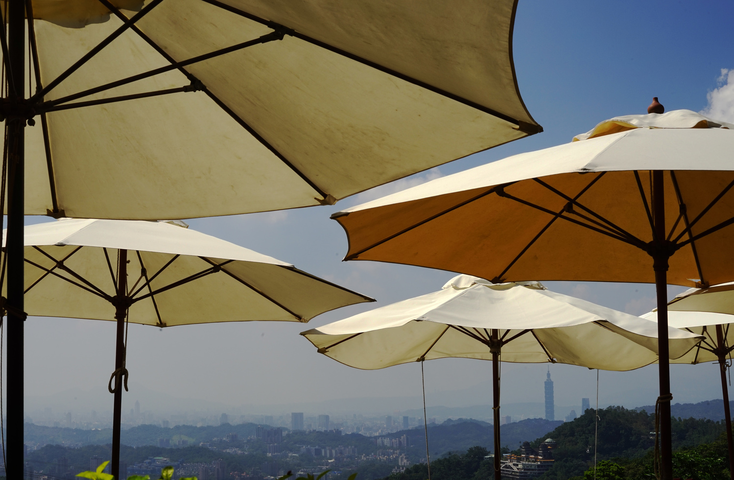 Umbrellas over Taiwan by Bri Kathleen