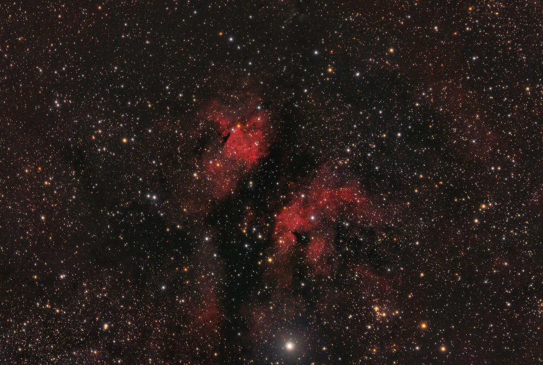 Sadr Region in Cygnus by Ken Mitchell