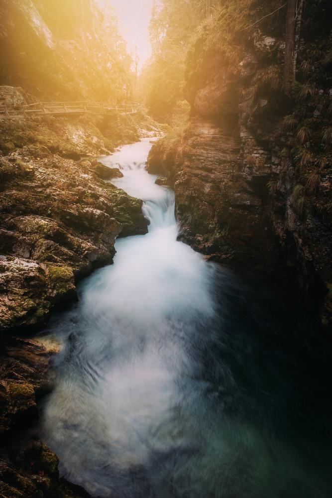 Stream by Dejan Andjelic