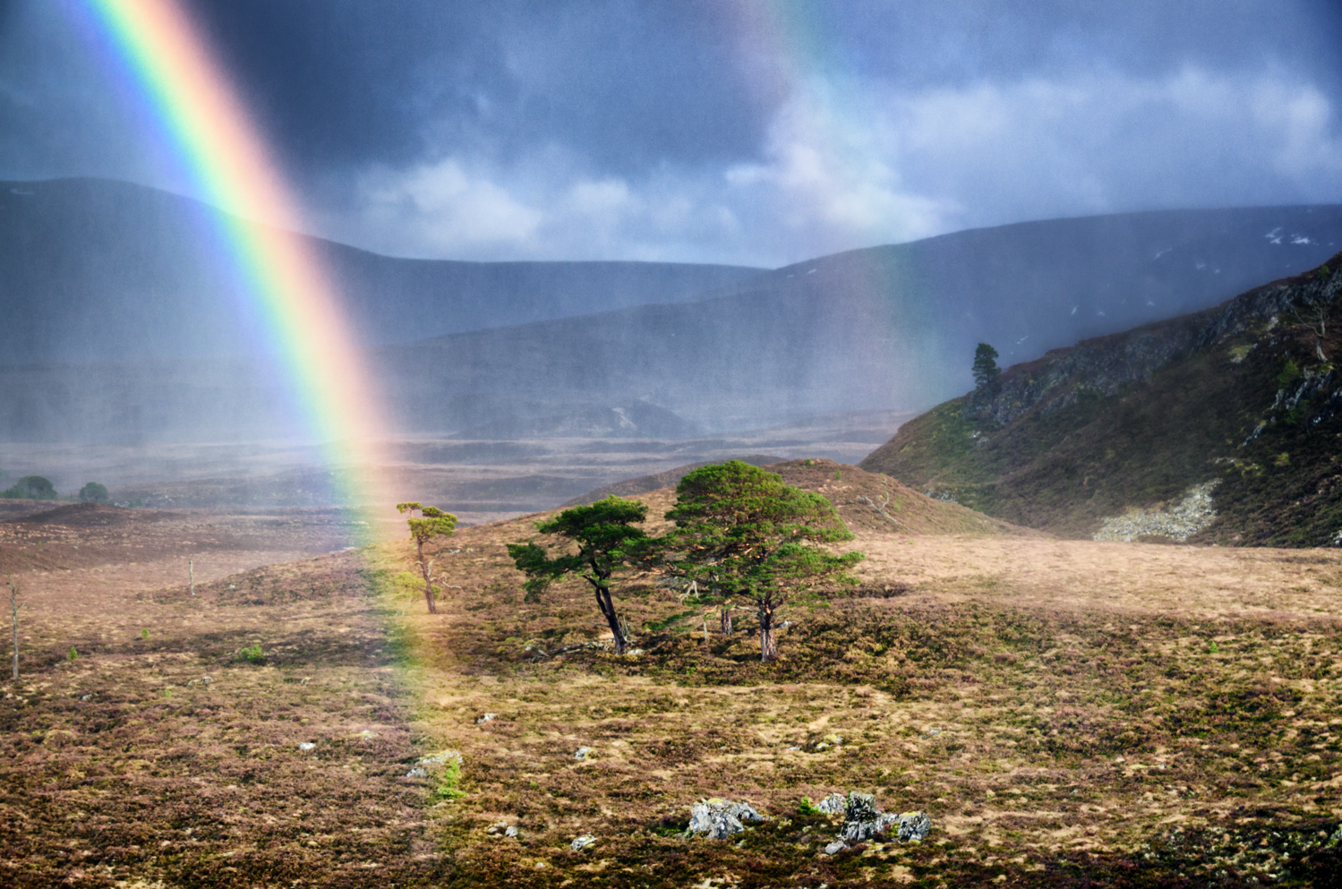 Between Two Rainbows by David Russell