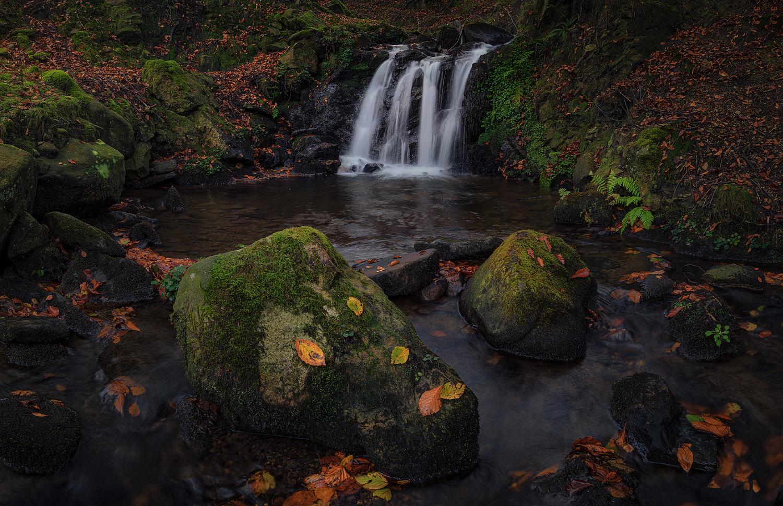 Gorbeia waterfall by Juan Romero Salamanca