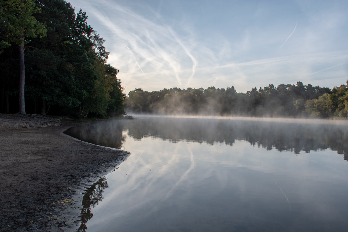 Lake Reflections by Sudha Peravali
