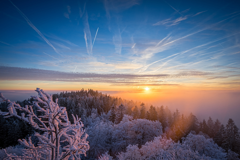 frosty dawn 2 by Otto Schlemmer