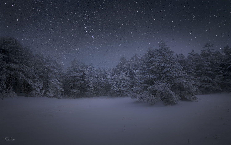 Silence by Taisuke Goto