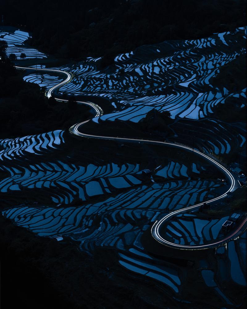 Blue paddy field by Taisuke Goto